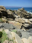 Some rocks looked like human figures reclining by the sea, discussing poetry...