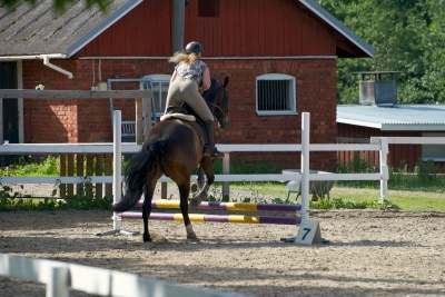 Performing in my first ever jumping competition with Sulo.
