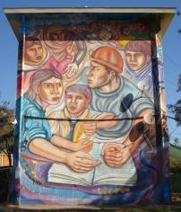 Olfer (Perú): Lucha por los derechas elementales, No 24