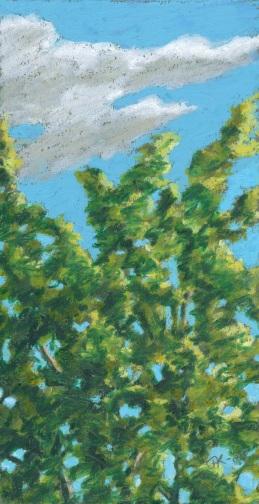 cloud&tree at petas08small