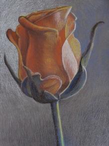 OranssiRuusu180214