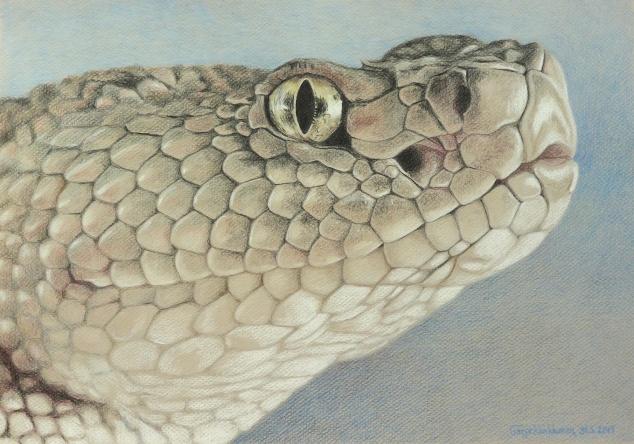 SnakeSmall
