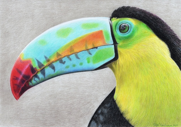 ToucanSmall