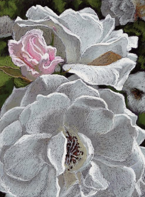whiteRoses&pinkSmall